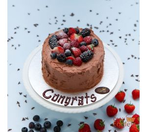 Chocolate Mixed Berry Cake (A2381)