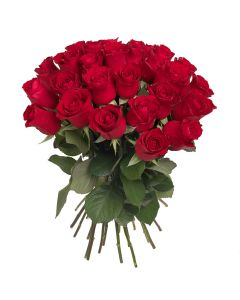 Bouquet of Roses (ROSE1)